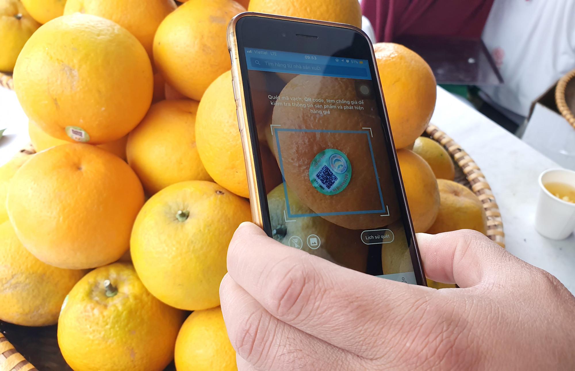 Nhiều du khách cẩn thận truy xuất nguồn gốc cam Vinh bằng điện thoại di động