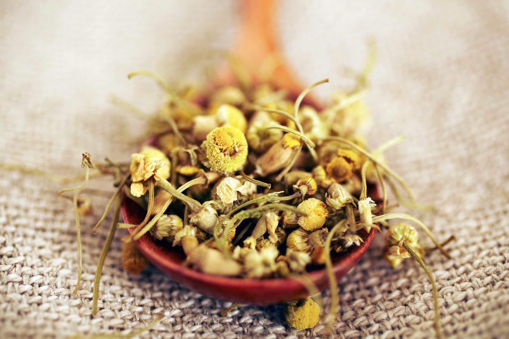 7.Hoa cúc Hoa cúc giúp giảm viêm da và có thể giúp trị mụn, theo một đánh giá được công bố trên Tạp chí Da liễu lâm sàng và thẩm mỹ. Trong máy xay sinh tố hoặc máy xay cà phê, kết hợp các thành phần của túi trà hoa cúc với nước đủ để tạo thành một hỗn hợp sệt, và dắp lên khu vực có mụn. Thay phiên, dốc hai túi trà hoa cúc với 1 cốc nước đun sôi trong 15 phút. Để trà nguội, sau đó dùng một miếng bông gòn thoa lên mặt sau khi rửa mặt.