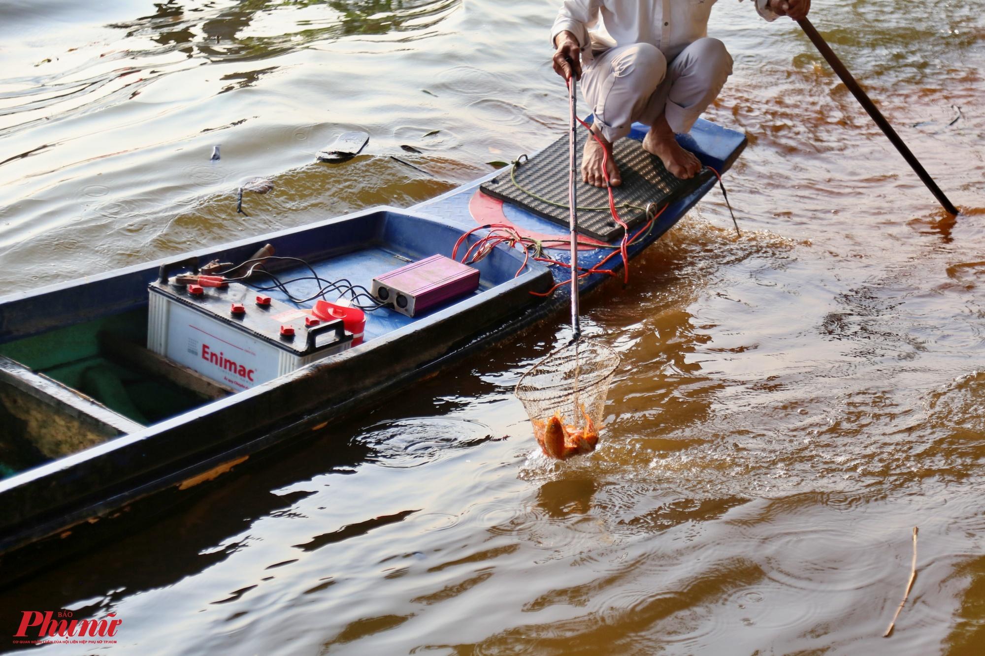 Một số người dân thuê thuyền ra giữa sông thả cá, những người này cũng theo sát để vớt