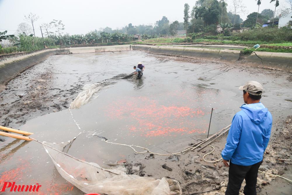 Bắt đầu từ 19 đến 22 tháng Chạp âm lịch cả làng Thủy Trầm bắt đầu xuống áo đánh bắt cá phụ vụ lễ ông Công ông Táo.