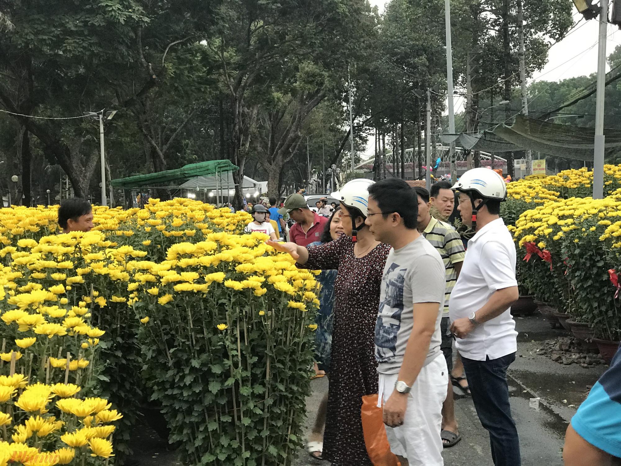Một người bán hoa cúc Ninh Hoà lâu năm tại công viên này cho hay, riêng năm nay điểm bán vận chuyển gần 20 xe tải hoa cúc vào TPHCM bán mỗi xe khoảng 40-80 chậu tuỳ kích thước.