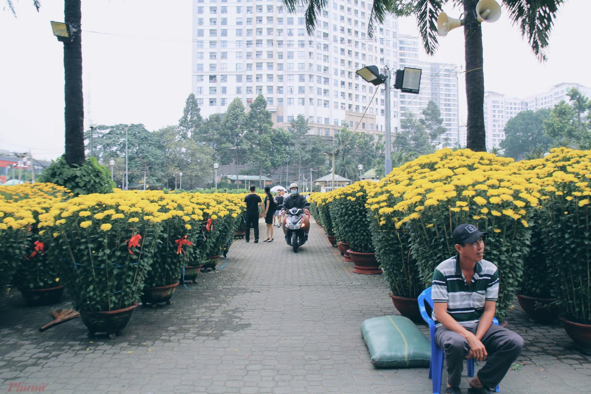công viên Gia Định (quận Gò Vấp) hoa tết được vận chuyển bắt đầu từ 17 âm lịch và theo kế hoạch bán của công viên này là đến 12h trưa 30 Tết, tiểu thương phải trả lại mặt bằng cho công viên làm đường hoa.