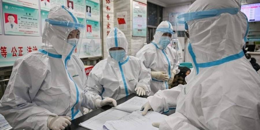 Lý thuyết cho thấy chũng virus mới xuất phát từ động vật hoang dã, một trong những