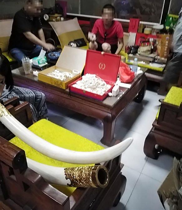 Các sản phẩm ngà voi đã qua chế biến - Ảnh: WJC