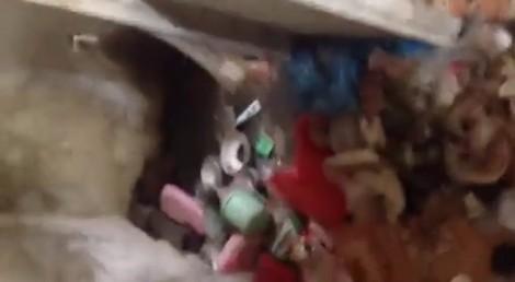 Cộng đồng mạng 'sốc toàn tập' với phòng trọ bẩn kinh hoàng của một cô gái