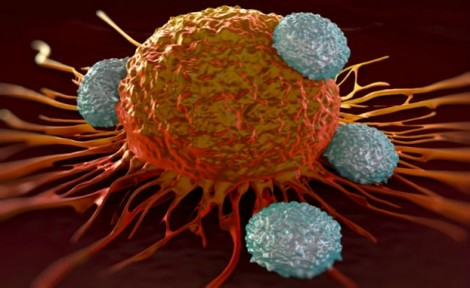 Tế bào ung thư có khả năng 'ngụy trang'