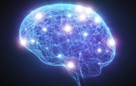 Người mang gen thông minh dễ bị... tâm thần