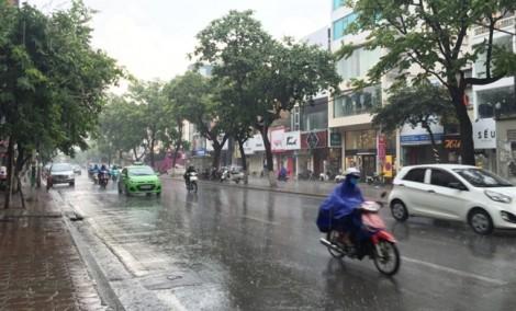 Cơn mưa 'vàng' giải nhiệt cho Hà Nội sau đợt nắng nóng kỷ lục