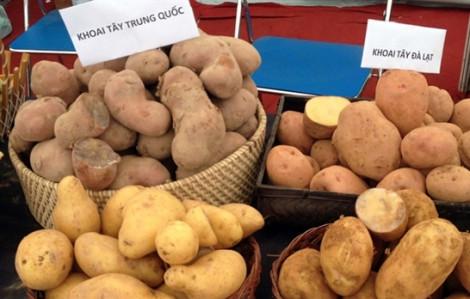 Hướng dẫn phân biệt khoai tây Đà Lạt và Trung Quốc