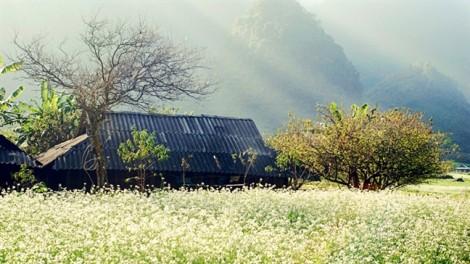 Việt Nam thuộc Top 20 quốc gia đẹp nhất thế giới