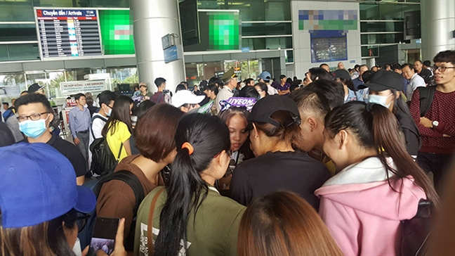 Hang tram fan chen lan, xo day tai san bay de don T-ara sang Viet Nam