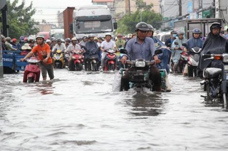 250 tỷ đồng xóa 'rốn ngập' phía Nam TPHCM