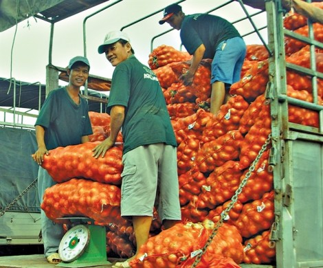 Nông sản giá rẻ châu Âu đánh bạt hàng Trung Quốc
