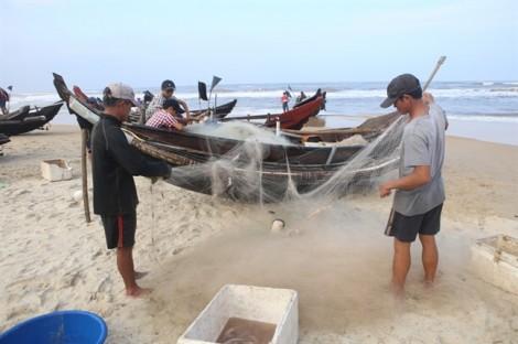 Ngư dân Huế kiếm tiền triệu nhờ trúng đậm 'lộc biển'