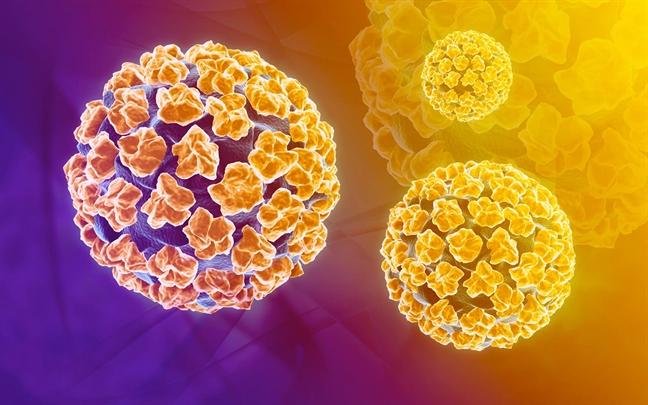 Nghien cuu chung minh trai tan van co the nhiem virus HPV