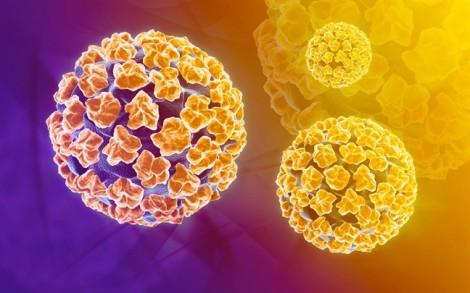 Nghiên cứu chứng minh trai tân vẫn có thể nhiễm virus HPV