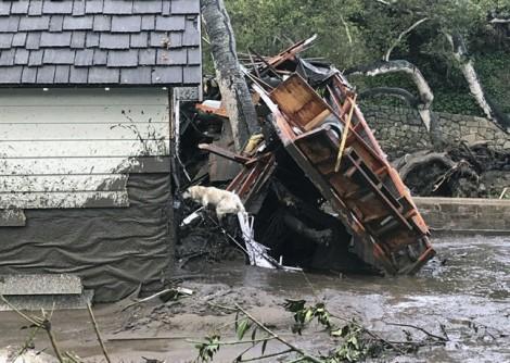 Bão quét qua rừng bị cháy ở California, 13 người thiệt mạng vì lở bùn