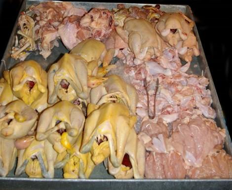 Gần 65% mẫu thịt heo bò gà ở TP.HCM nhiễm vi khuẩn gây tiêu chảy, dị ứng