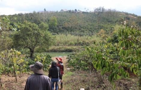 Vụ phân bón Âu Châu bị tố kém chất lượng ở Đắk Nông: Xử lý ầu ơ, dân thiệt thòi