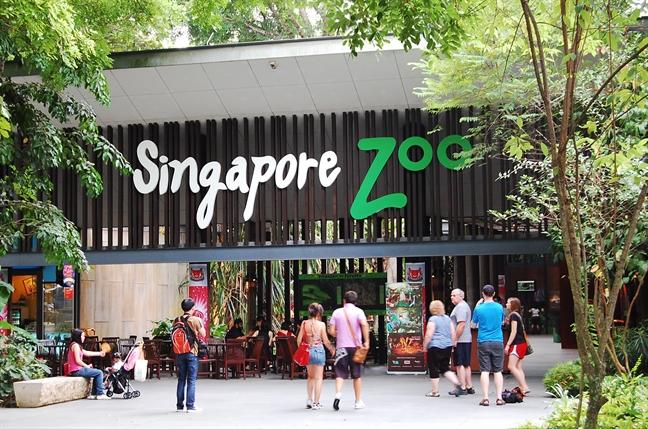 Vi sao ban nen den Singapore trong dip le 30/4 nam nay