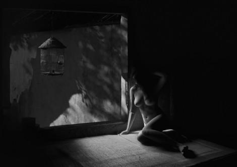 Sau nhãn 18+, triển lãm ảnh khỏa thân lại gây tranh cãi về chất lượng
