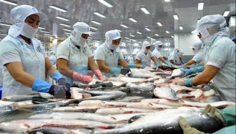 Doanh nghiệp Việt có thể bị kiện tại thị trường xuất khẩu hàng chục năm