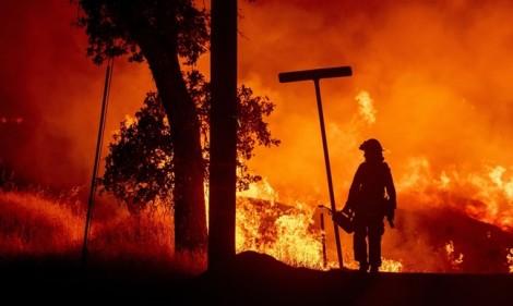 California ban bố tình trạng thảm họa vì cháy rừng