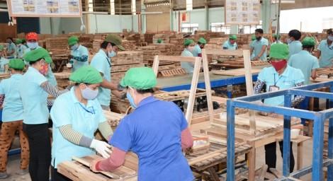 Thủ tướng lần đầu đối thoại cùng doanh nghiệp ngành gỗ