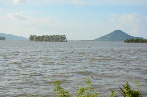Vỡ đê bao, 70% diện tích lúa của Tri Tôn - An Giang mất trắng