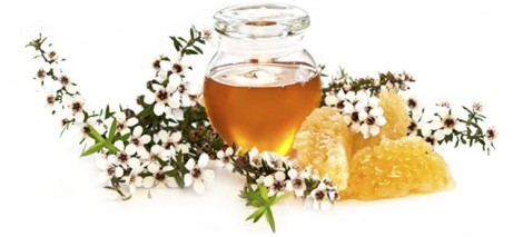 Công dụng chăm sóc da tuyệt vời ít nàng biết từ mật ong manuka, việt quất