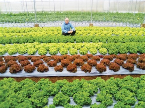 Bài 1: 'Sống chung' với côn trùng để có rau củ hữu cơ