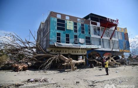 Thành phố Indonesia hồi sinh sau thảm họa động đất và sóng thần