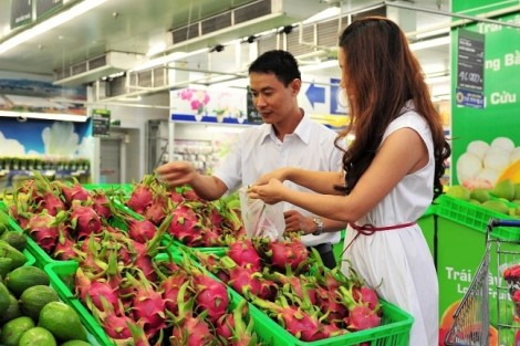MM Mega Market mua hơn 100 tấn thanh long hỗ trợ nông dân