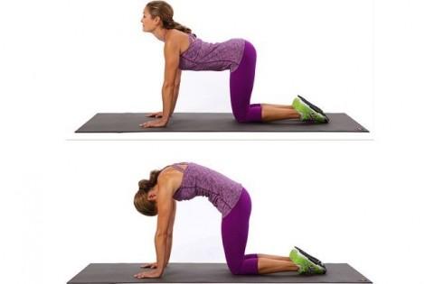 8 bài tập chống đau lưng hiệu quả