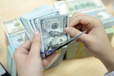 Chuyên gia tài chính dự báo tỷ giá USD/VNĐ năm 2019