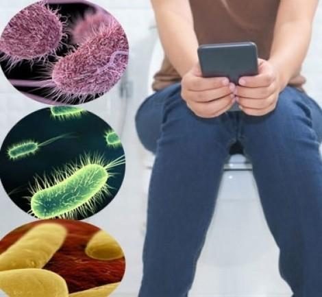 Dùng điện thoại trong nhà vệ sinh dễ nhiễm những vi trùng đáng sợ này