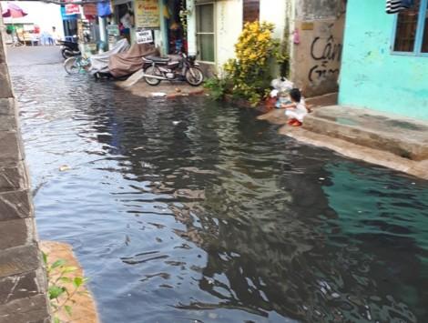 Hẻm 48 Lâm Hoành vẫn ngập triền miên trong nước thối