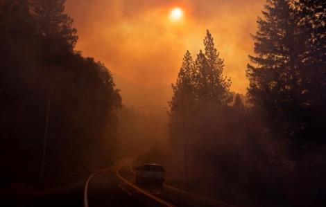 Những con số báo động trong biển lửa ở California