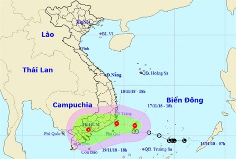 TP.HCM ra công văn khẩn đối phó với bão số 8