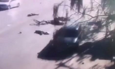 Trung Quốc: Xe điên đâm vào học sinh tiểu học, 5 trẻ thiệt mạng