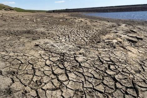 Cuộc chiến chống biến đổi khí hậu – Bài 2: Sự sống bị hủy diệt