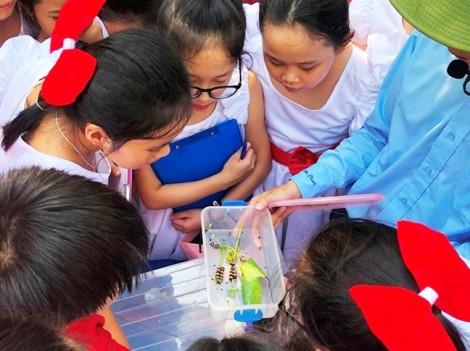 Chương trình giáo dục phổ thông mới: Có giẫm lên vết xe đổ phân ban?