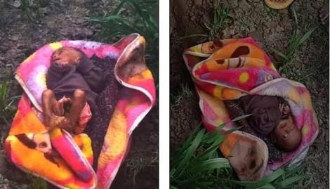 Ấn Độ: Cứu sống bé gái 3 tuần tuổi bị vùi dưới đất