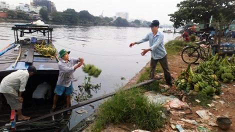 Sài Gòn, hễ còn ăn trái, chơi bông…