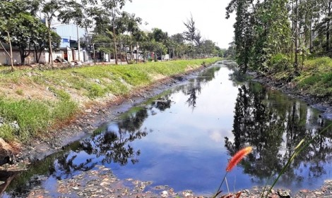 Yêu cầu xử lý vi phạm về môi trường tại khu công nghiệp Lê Minh Xuân
