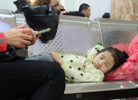 Cục trưởng Cục An toàn thực phẩm: 'Không có gì là bất thường qua tỷ lệ xét nghiệm dương tính với sán dải heo của trẻ em ở Bắc Ninh'