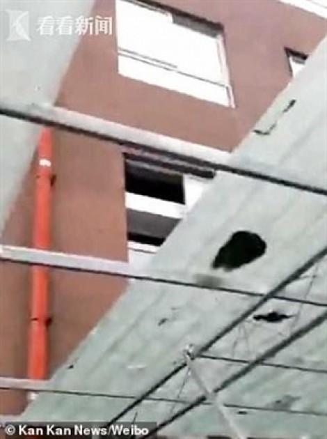 Rơi từ cửa sổ tầng 26, bé gái thoát chết trong gang tấc