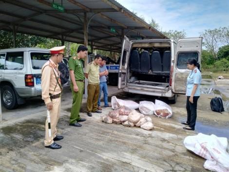 Quảng Nam: Bắt giữ xe khách chở hơn 500kg thịt bốc mùi hôi thối