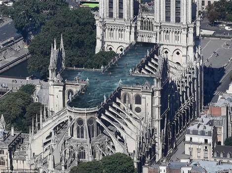 Chuyện trên mái nhà thờ Đức Bà Paris