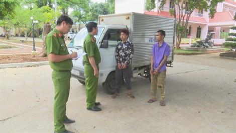 Hai tên trộm bị lộ vì không biết lái xe ô tô